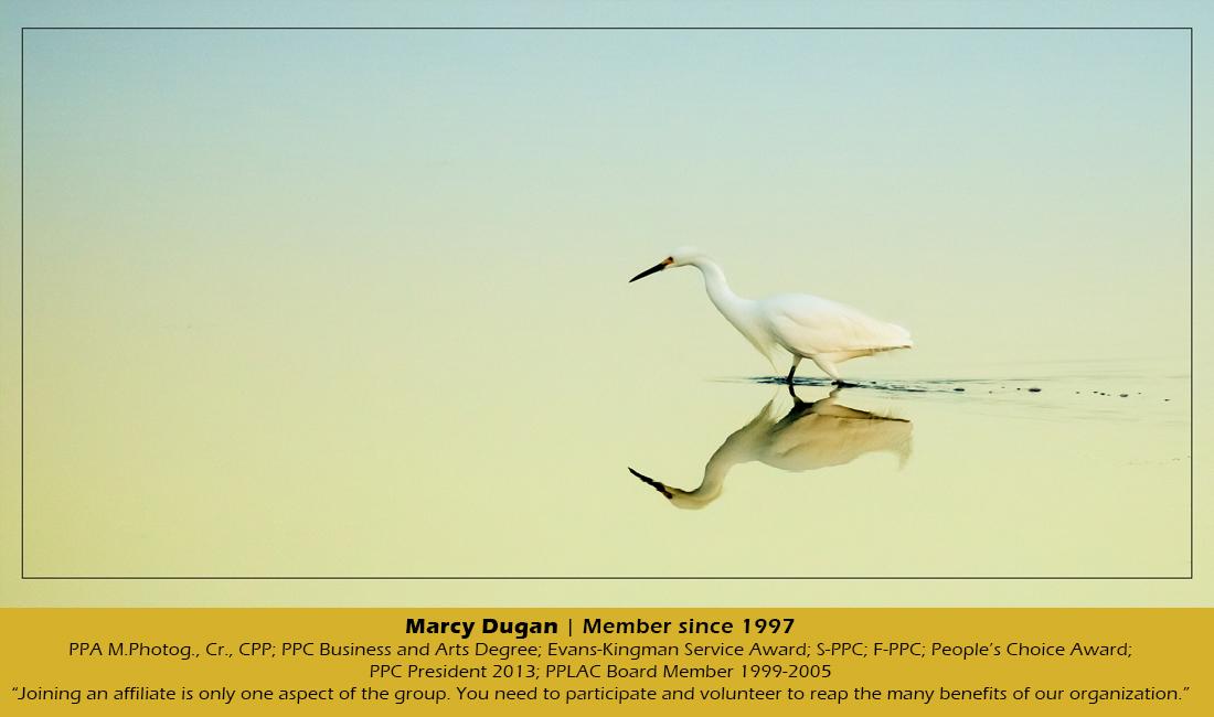 Slider – Marcy Dugan